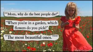pick-flower-beautiful-beauty